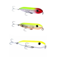 ISCA STORM TOP WATER DOG