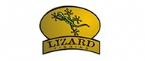 Conheça a marca Lizard Fishing