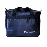 Bolsa térmica bag freezer 10 lts nylon